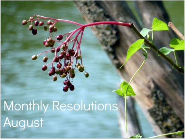 Monthly Resolutions August
